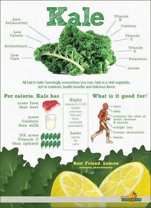 kale-nutrition-facts