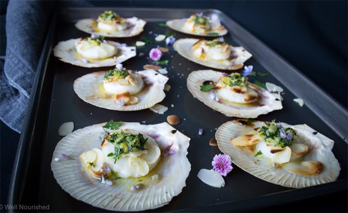 scallops-thanksgiving