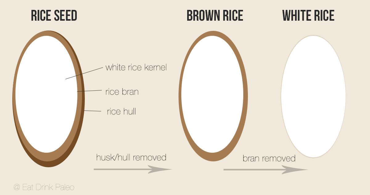 paleo diet is rice allowed