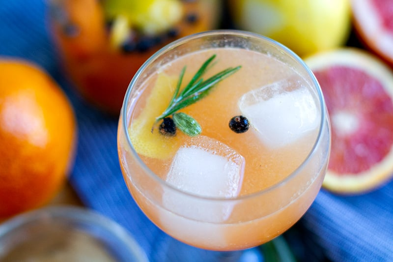 Alcohol free gin and tonic inspired drink