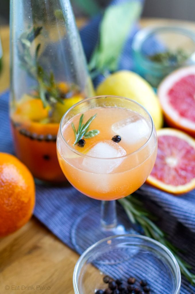 Paleo Cocktail - Faux Gin & Tonic, Non Alcoholic
