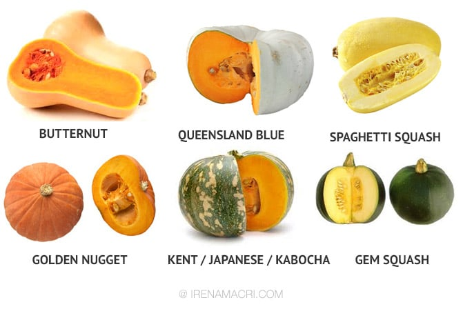 Pumpkin Types & Varieties