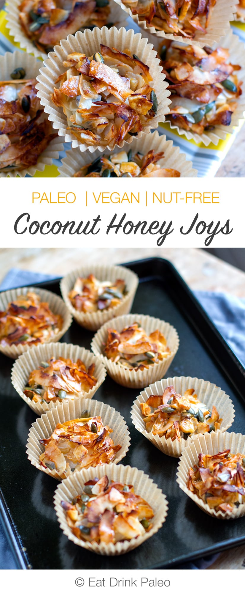 Coconut Honey Joys (Paleo, Vegan, Gluten-Free, Nut-Free, Corn-Free)