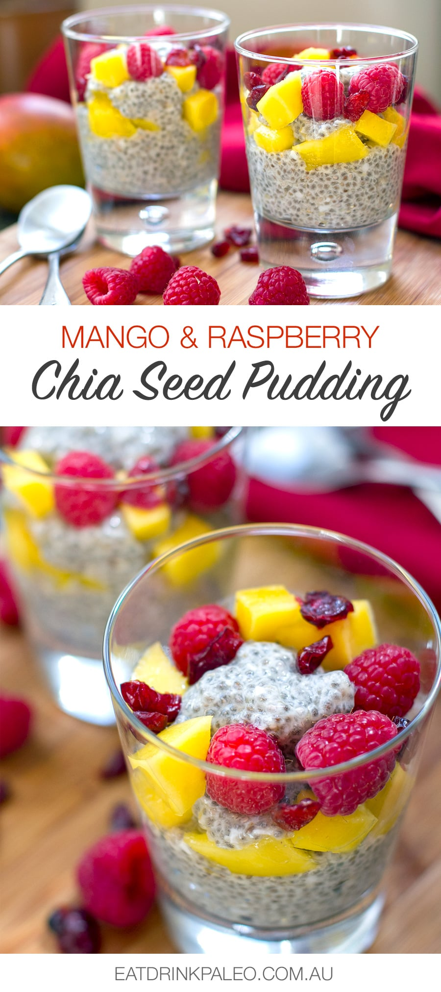 Coconut Mango Chia Seed Pudding (Gluten-free, Paleo, Primal, Dairy-free)