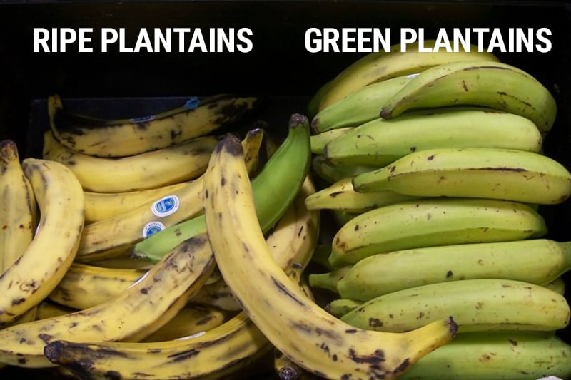 Green Plantains Vs Ripe Plantains