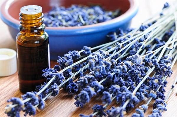 lavender-essential-oil-benefits