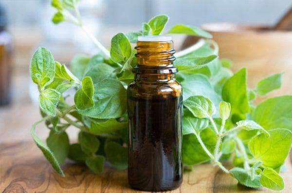 oil-of-oregano-benefits