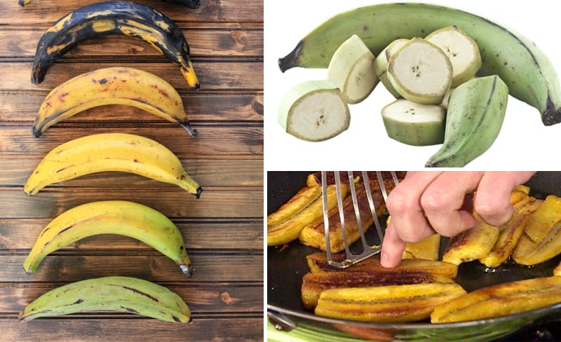 What are plantains? Plus, 15 Plantain Recipes Paleo