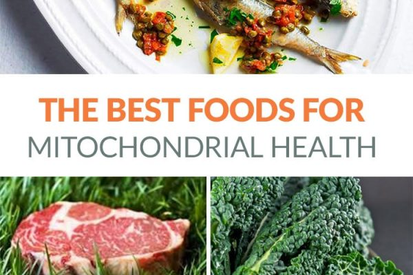 The best foods for mitochondria health