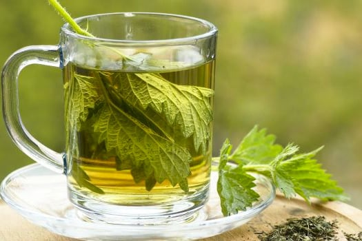 stinging-nettle-tea-calcium