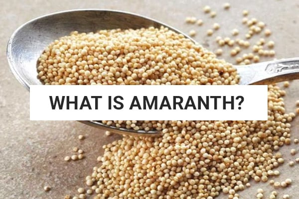 what-is-amaranth-paleo-diet