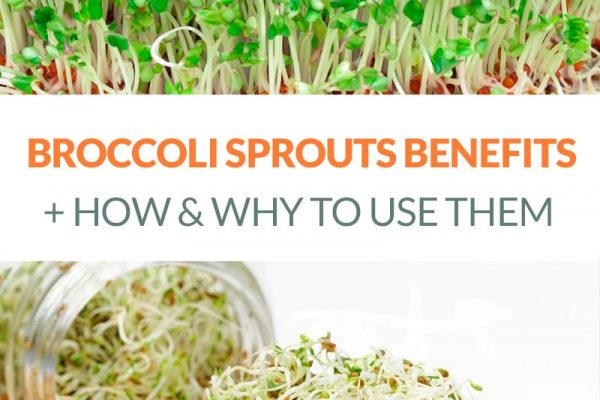 The Amazing Broccoli Sprouts Benefits & How To Use Them