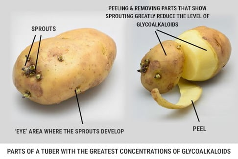 Glycoalkaloids in potatoes in skin