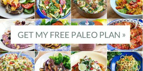 Free paleo meal plan