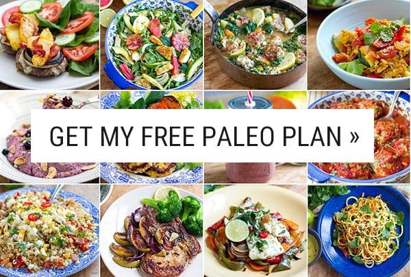 Free Paleo Diet Plan