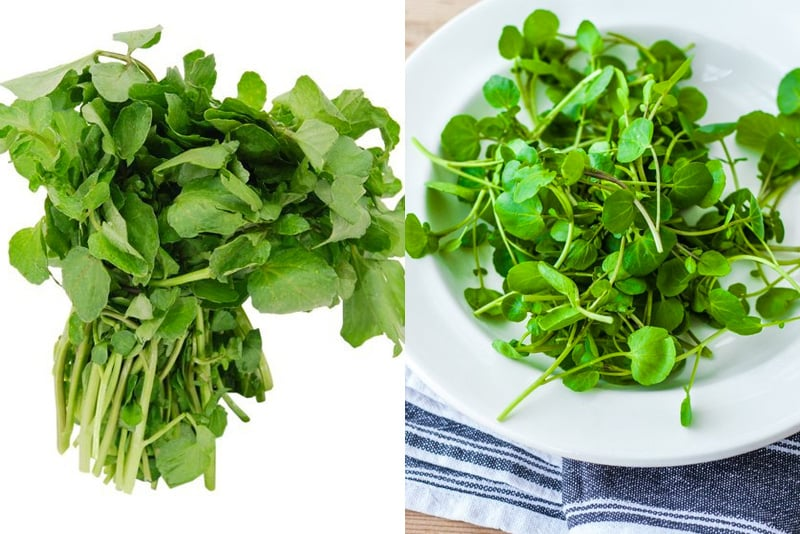 What is watercress and what it tastes like
