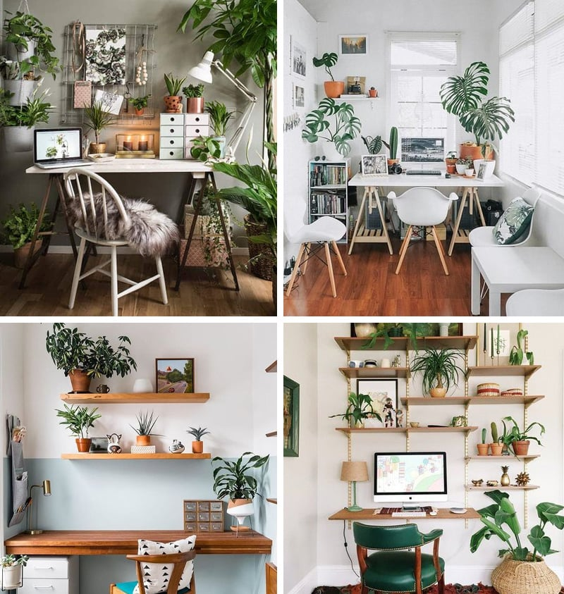 Home office plants inspiration