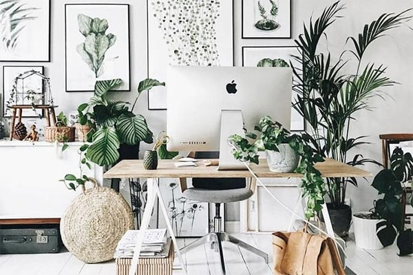 Healthy work from home office ideas