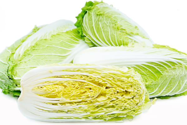 What is Chinese cabbage / Napa cabbage / Wombok ?