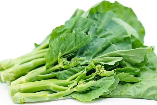 Chinese Broccoli / Gai Lan / Kai Lan / Chinese Kale