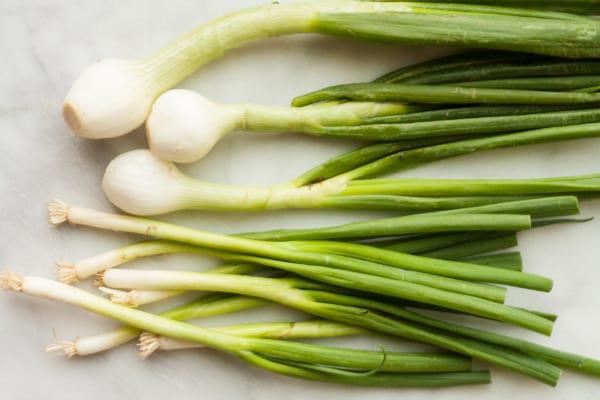 scallions-spring-onions