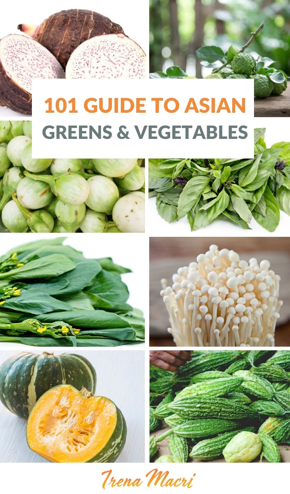 101 Guide To Asian Greens, Vegetables, Mushrooms & Herbs